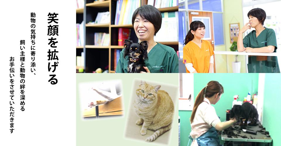 獣医師×動物看護師 動物たちの気持ちに沿った優しい治療を心がけています。